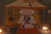 Impa (Breath of the Wild)