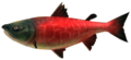 Majora's Mask 3D Fish Postal Salmon (Swamp Fishing Hole).png