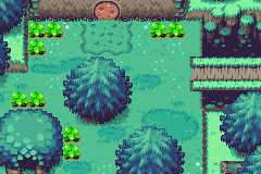 File:Minish Woods.png