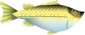 Ocarina of Time Fish Bass (Render).png