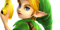Young Link/Hyrule Warriors