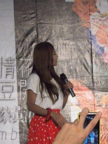 檔案:蔡黃汝 (8).JPG
