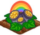 Rainbow Crop