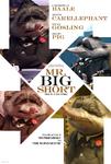 Mr. Big Short