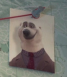 Polar Bear 2 - MM