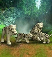ZT1 - White Bengal Tiger
