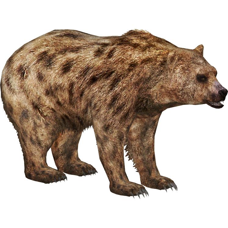 Nandi Bear Titan Zt2 Download Library Wiki Fandom
