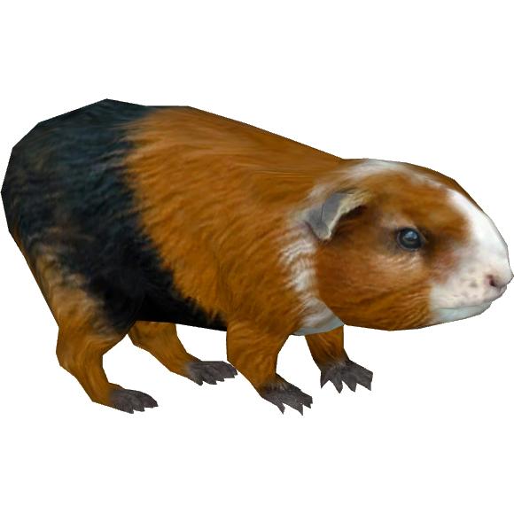 Guinea Pig Tamara Henson Zt2 Download Library Wiki