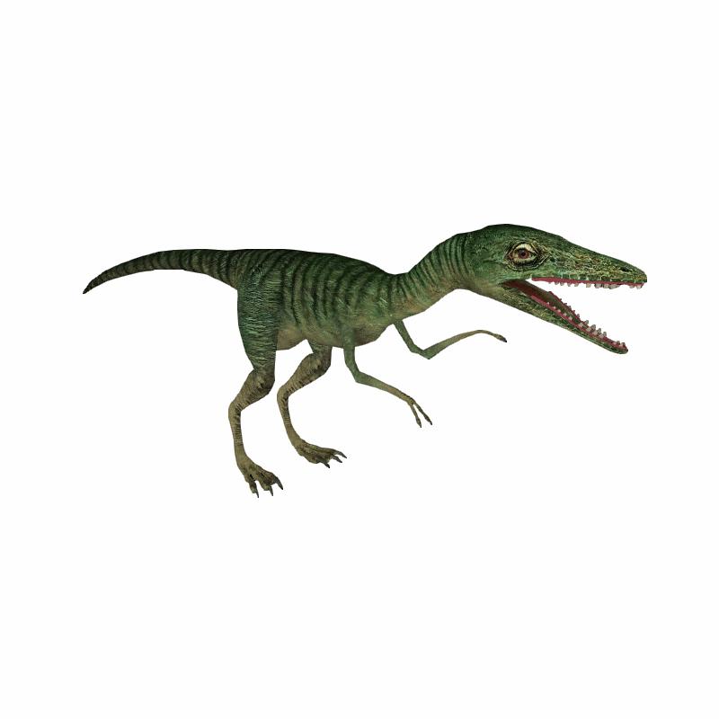 Compsognathus Deinonychus 110 Hendrix Amp Samuel Zt2