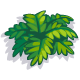 Low Fern-icon.png