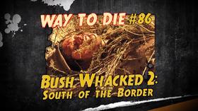 Bush Whacked 2