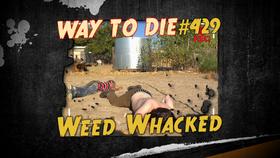 Weed Whacked