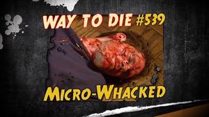 Micro-Whacked
