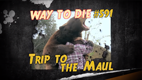 Trip to the Maul