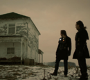Witness (episode)