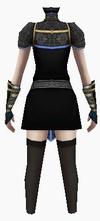 Fujin-chaotic heaven armor-female-back