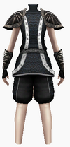 Fujin-poisonous armor-female-back
