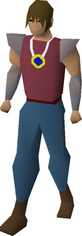 File:Sapphire amulet equipped.png