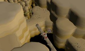 Monkey Madness II - crossing Kruk's dungeon