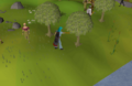 Cutting Willows.png