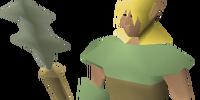 Elf warrior