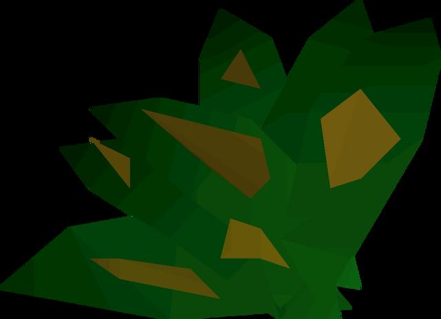 File:Grimy dwarf weed detail.png