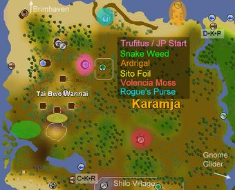 Jungle Potion materials map