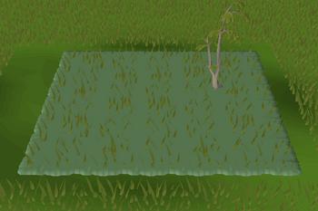 Forest habitat built