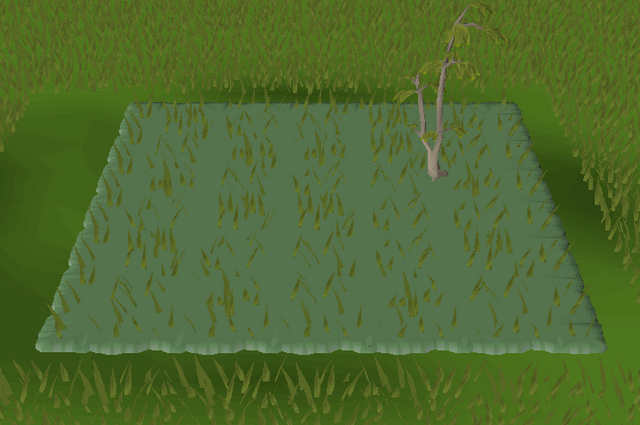 File:Forest habitat built.png