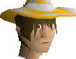 File:Light infinity hat chathead.png
