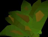 Grimy ranarr weed detail