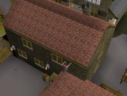 Draynor Village Agility Course 5