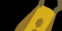 Team-20 cape