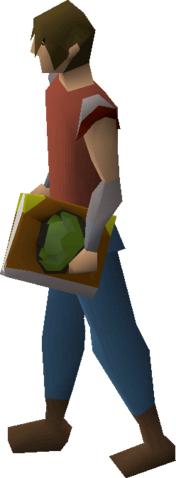 File:Cruciferous codex equipped.png