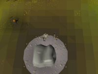 Cryptic clue - talk konoo zeah