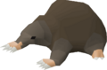 Baby mole pet.png