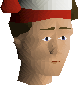 File:Inverted santa hat chathead.png