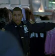 8x21-nypd-mall-officer