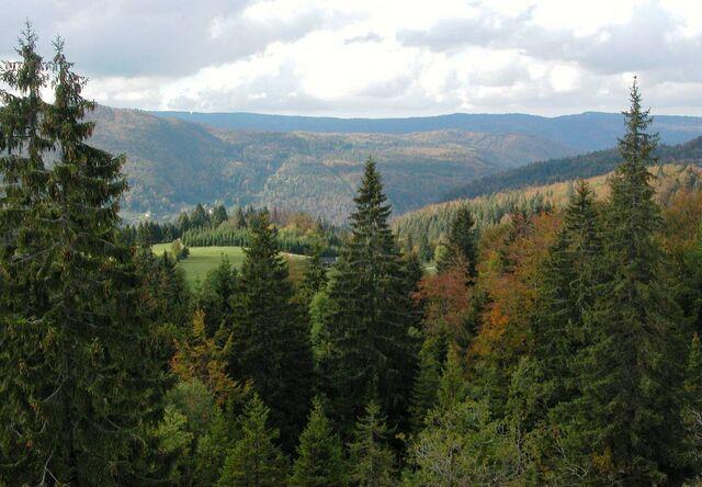 File:Jura-mountains4.jpg