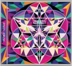 2NE1 Physical Copy PINK