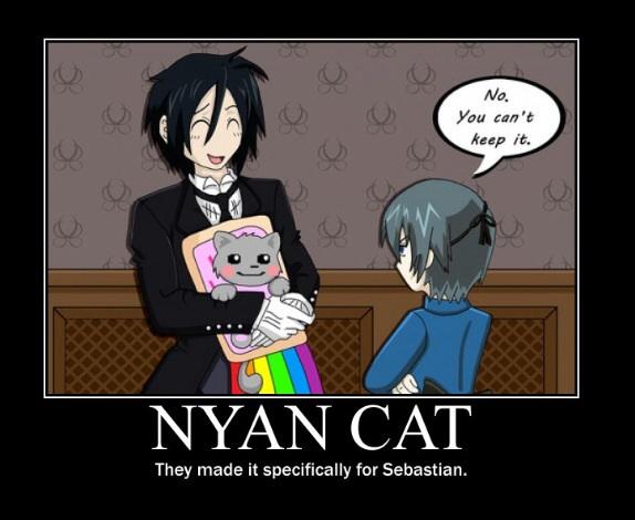 File:Cat8.jpg