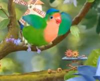3rd & Bird Quinn Gears Theme