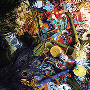 220px-Animal Collective - Summertime Clothes -2009--1-