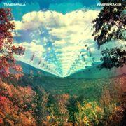 Tame Impala Innerspeaker cover-1-