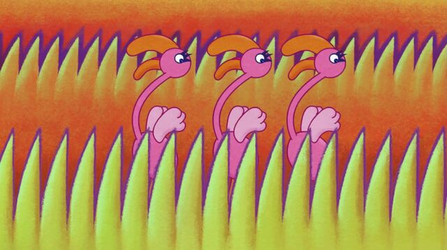 File:Another Image of Flamingos.jpg