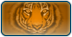 Tiger Cloth Pattern thumbnail