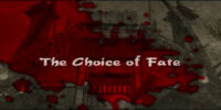 The Choice of Fate