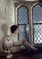 File:Harrypotter dormwindow.jpg