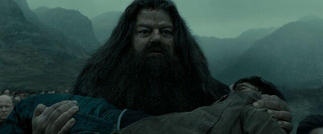 File:Hagrid carrying Harry.jpg