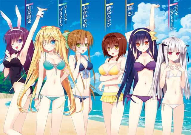 File:800px-Absolute Duo Volume 3 Colour 2.jpg